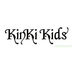 KINKI KIDS 夢を見れば傷つくこともある 日版