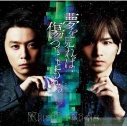 kinki kids 若懷抱夢想有時也會受傷 (CD+DVD)【台壓初回盤A】