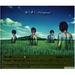 flumpool×五月天 強く儚く , Belief 〜春を待つ君へ〜 CD+DVD