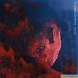 JAY PARK  EVERYTHING YOU WANTED 韓版