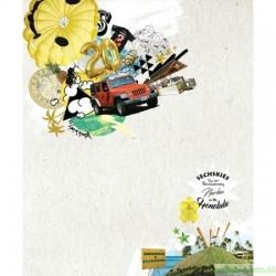 水晶男孩SECHSKIES - THE 20TH ANNIVERSARY DVD - NEW KIES ON THE [HONOLULU] DVD韓版