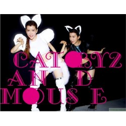 BY2	CAT and MOUSE 台版